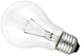 25 Watt Standard Shape (GLS) Edison Screw Clear