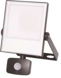 30 Watt Daylight Energizer LED Sensor Floodlight