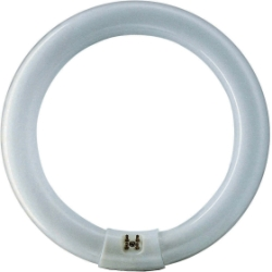 Circular Fluorescent T9 60 watt 400 mm dia White