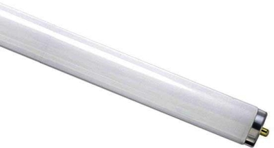 Fluorescent T12 30 Watt Monopin Cool White