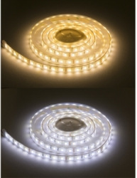 IP68 LED Strip 24V 5m CCT Adjustable 12W/m (3000k to 6000k)
