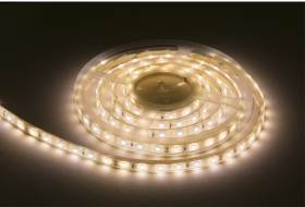 IP68 LED Strip 24V 5m Warm White 4.8W/m