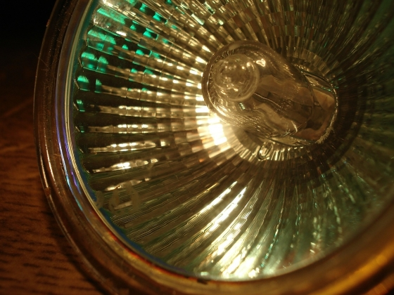 Will the European Commission Vote to Delay Halogen Light Bulb Ban?
