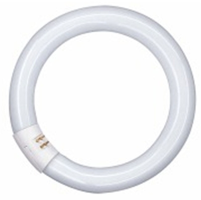 This is a 32 W G10q Multi Tube bulb that produces a Cool White (840) light which can be used in domestic and commercial applications
