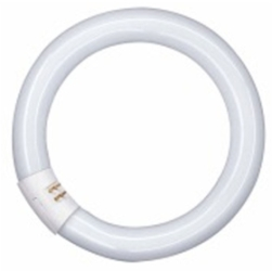 This is a 40 W G10q Multi Tube bulb that produces a Cool White (840) light which can be used in domestic and commercial applications