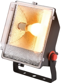 This is a Black finish light fitting