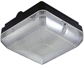 This is a Black/Clear finish light fitting and takes a 4 Pin light bulb produced by Red Arrow